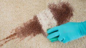 ta bort kaffefläckar på matta